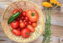 Culture & Greens Garden / Photos from our home organic garden here in the Niagara Region, Ontario, Canada