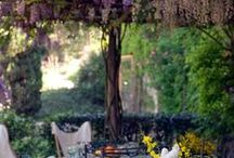 Italy | Spring Table Design / Spring Walks, Blossoms and Gardes in Venice