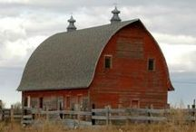 """Barns / Vintage barns. See my board """"Dwellings and sheds"""" for construction ideas."""