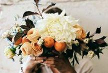 Flowers / Floral / flowers