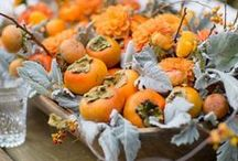 Venice | Thanksgiving Styles / Colorful market food and the Lagoon of Venice as its stage