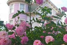 Cute homes / Romantic cottages and homes / by Patricia Rose