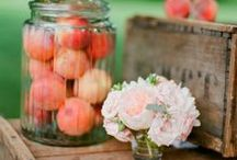 Peach / Peach colored wedding inspiration for my clients