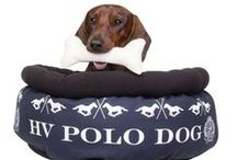 HV POLO - Funny finds??? :) :) / Funny photos around social media