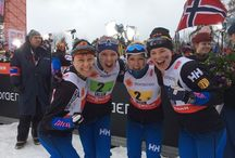 XC SJ NC / Board of Nordic Skiing; Cross-Country, Ski Jumping, Nordic Combined, World Cup, World Championships, OWG and Lahti Ski Games [Salpausselän kisat]