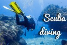 "~ Scuba diving the World ~ / We invite all ""Scuba diving Lovers"" to share images of diving spots around the world. Please keep in mind that this board only showcases ""Scuba Diving"" content. All unrelated and duplicate posts will be deleted. If you want to be a contributor, please follow this board and leave a comment on a recent pin. To see more scuba diving pictures follow our ""Live.to.Dive"" account on Instagram: https://www.instagram.com/live.to.dive/ See you there!"