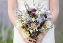 Lavender Weddings / Lavender wedding colour schemes