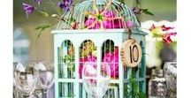 Cages ※ Birdcages
