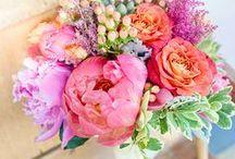 B E A U / Beautiful  Pretty  Belle.....