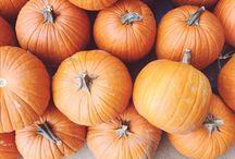 fantastic fall photographs