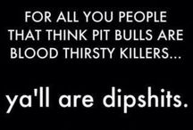 Awesome Pit Bulls / Pit bull shaped hole in my heart / by That's What He Said MY MY