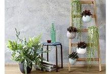 Pintratuin - Stoer - Landelijk - Sfeervol / Warme kleuren, niet teveel wit. Gezellige, stoere, landelijke, sfeervolle inrichting #intratuin #pintratuin