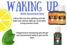 Back To School With Essential Oils / Learn all about how to use Essential Oils as you head back to school.