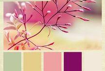 Kleurschema's