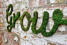 N a t u r e / Welcome to my secret garden...