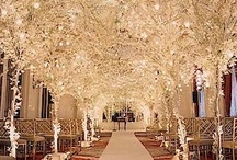 Natalie's Wedding / by Zoe Galang