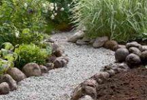 Anzette's garden  / Garden ideas