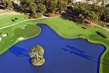 Golf / Sport dla nie tylko dla biznesmenów.