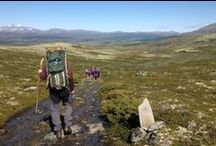 The St. Olav Ways / This pilgrim paths to Trondheim (Nidaros), is a network of authentic, historical routes leading through beautiful nature, agricultural landscapes and historical places in Norway and Sweden. Walk the St. Olav path.