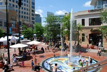 Downtown Silver Spring / One of the major perks of the Blairs community is being in walking distance to the heart of Silver Spring! With AFI, The Fillmore, and a myriad of eclectic restaurants and venues just around the corner, there's never a dull moment in our neighborhood!