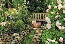 my.garden & cottage