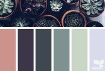 Crazy for Color / A collection of color palettes perfect for every room in your home.