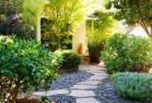 Gardening / Advice, inspiration, lists, and tutorials for cultivating a healthy, eco-friendly garden - whether it's the size of your yard, or just a few pots on a window sill.