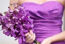 Wedding: Purple
