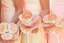 WEDDING: Coral