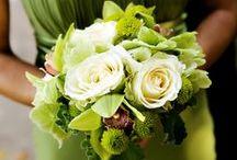 WEDDING: Olive Green