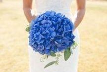 Wedding: Blue