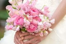 Wedding: Pink