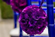 WEDDING: Purple * Blue