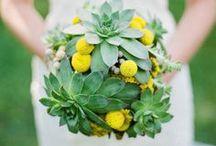 WEDDING: Yellow * Green