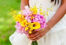WEDDING: Yellow * Pink