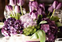 WEDDING: Purple * Green