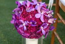 WEDDING: Purple * Magenta