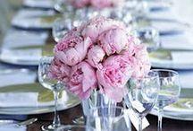 WEDDING: Pale Blue * Pale Purple