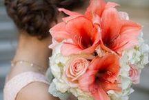 WEDDING: Orange * White