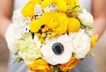 WEDDING: Yellow * White