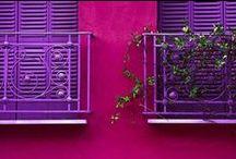 HOME: Purple * Magenta