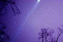 Color : Purple / All beautiful things purple