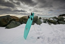 the surf [board] / boards, beaches & waves / by ub