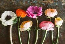Bloemen, bloemstukken / #Bloemstukken #Bloemen #Mooi #Prachtig #Afscheid #Uitvaart