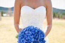 Wedding / by Elizabeth Reed