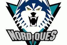 Les Nordiques de Québec / On croit & on veut le retour de la LNH ici à Québec. / by Sammy Jonas Samey