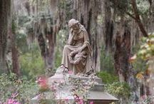 Begraafplaatsen / #Begrafenis #Begraafplaats #Verlies #Uitvaart #Afscheid #Daglief