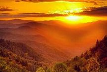 Great Smoky Mountains / by sheila jarvis