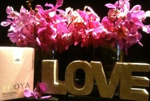 Love Is In The Air / spoil - indulge - pamper the one U love not only on valentine's day & but also every day!