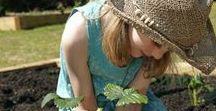 Gardening with Kids! / There is no greater joy that showing your kids all about gardening!  Here are herb, vegetable and flower plant ideas for you when you garden with children. Isn't it fun to see kids discover how things grow!